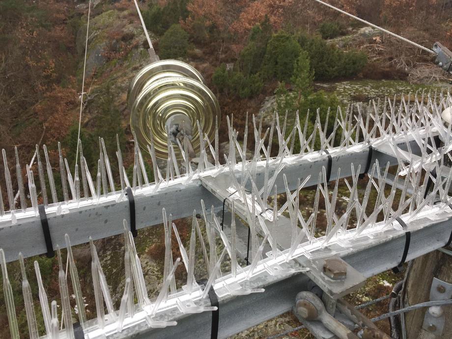 PLAST: Disse isolasjonspinnene av plass skal hindre hubroen å sette seg. Foto: Laugstol