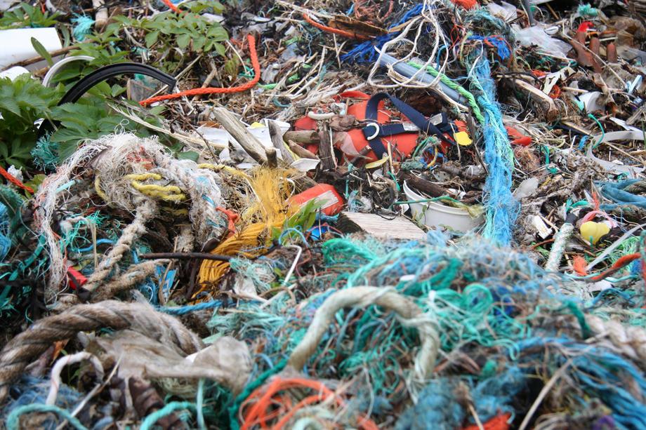 Husk å rydde en strand 6. mai