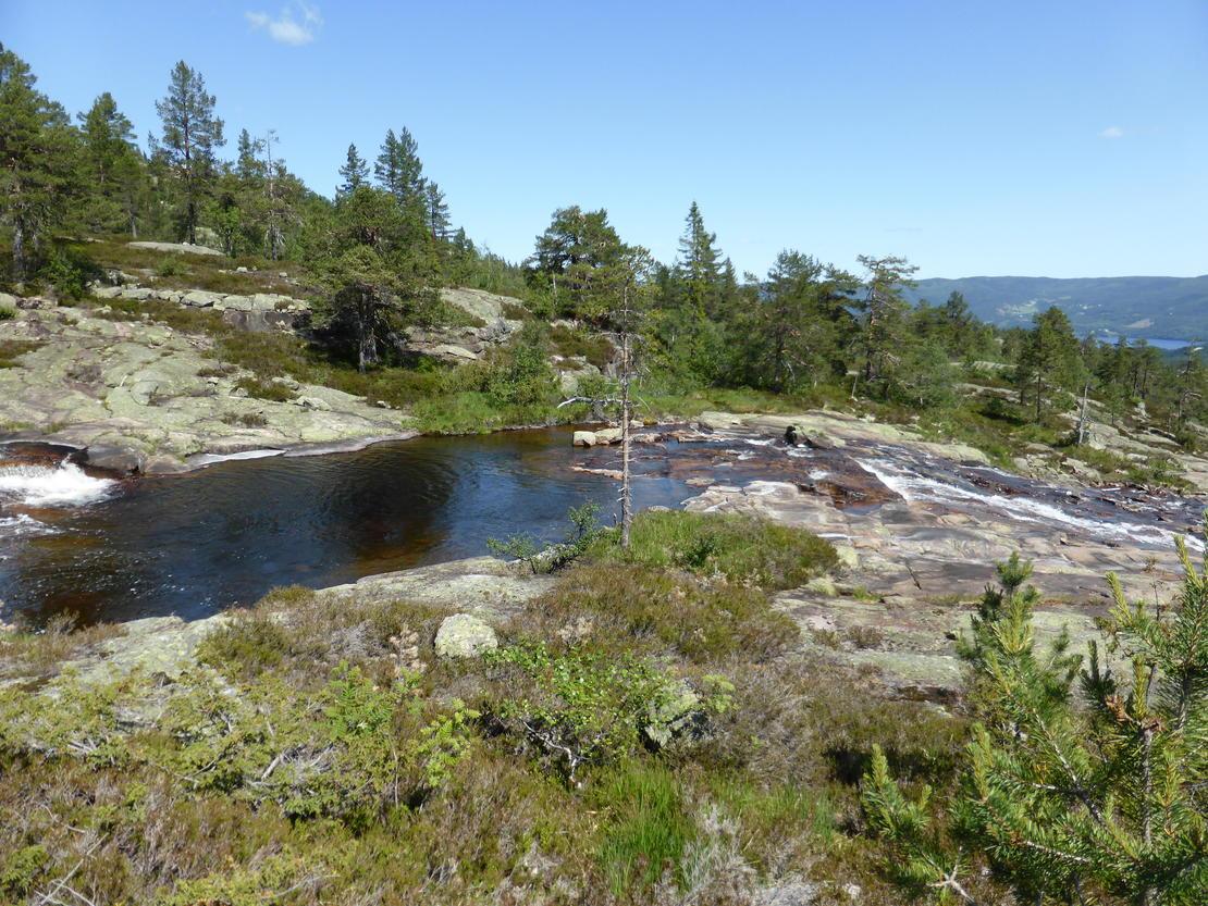Dam i dammen. Her er inntaket til Støyldalen kraftverk planlagt. Det må bygges en liten dam for å sikre inntaket mot frost. Den blir lagt omtrent midt i dammen for å gjøre den mindre synlig i terrenget. FOTO: BJARTE GUDDAL.