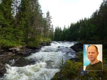 Seksjonssjef Lars Søfteland (innfelt) skulle helst sett at de rødlistede lavartene ble funnet ved de tidligere miljøundersøkelsene.  FOTO: BJARTE GUDDAL/RUHNE NILSSEN.